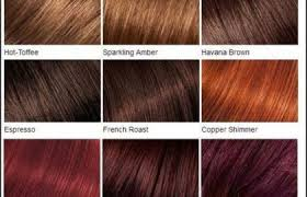 Loreal Hair Colour Chart Reds Loreal Color Chart Different Blonde Brown Red Dark Hair