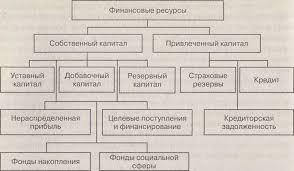 Состав и структура финансовых ресурсов страховой организации Структура финансовых ресурсов