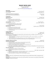 Resume For Music Sugarflesh