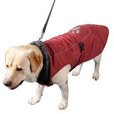 weather resistant lined winter coat large dogs