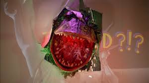 Image result for Little Shop of horrors ending