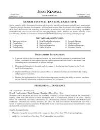 Sample Resume For Bank Professional Banking Resume Sample For A