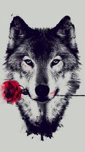 galaxy tumblr hipster wolf. Contemporary Wolf Wallpaper Hipster  Wolf Pinterest Wallpaper And Wallpaper And Galaxy Tumblr G