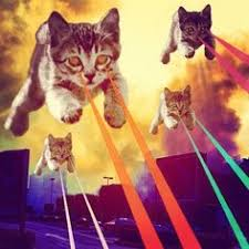 cats shooting lasers out of their eyes. Delighful Cats Cat With Lasers With Cats Shooting Lasers Out Of Their Eyes