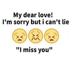 My Dear Love I'm Sorry But I Can't Lie I Miss You Love Meme On MEME Inspiration I M Sorry Love