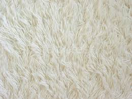 white carpet texture. Stock Photo: Texture Of White Fuzzy Carpet