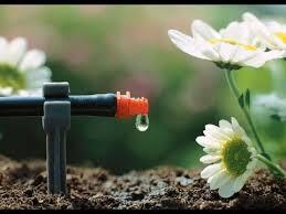 Система микрокапельного <b>полива Gardena</b> / Автоматический ...