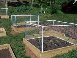 A great raised garden idea with a small fence to protect the plants from  pesky little