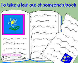 take a leaf out of someone s book