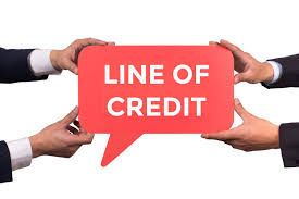 Image result for business line of credit