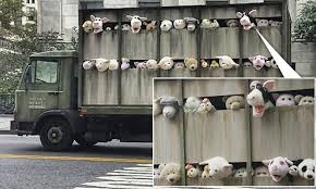 Banksy's latest New York art piece is a roving truck filled with lively  stuffed animals
