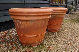 tall terracotta planter. Brilliant Planter Pair Of Very Large Terracotta Planters  In Tall Planter R