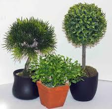 cheap office plants. Cheap Fake Tree Plants Office