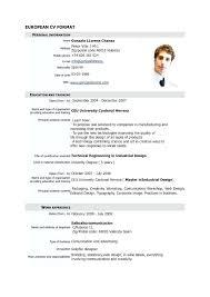 German Cv Template Newskey Info