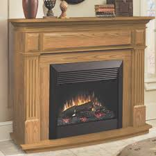 fireplace cool dimplex electric fireplace insert home depot good home design modern and home design
