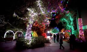 Zoo Lights Tucson Dont Miss Zoo Lights A Magical Tucson Holiday Tradition