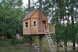 Tree House Plans Two Trees Tremendous 6 Tiny House