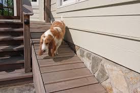 yard ideas for your four legged family member