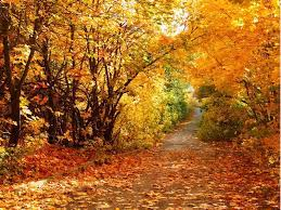 Fall Scenery Wallpaper for Computer on ...