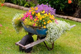 container gardens. Container Gardening Lunch And Learn: Beauty Convenience \u2013 HootOwlHill Gardens