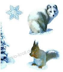 Deko Punkt Roth Fenstersticker Set 12 Tlg Husky Hund