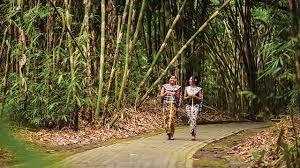 Kalimat bhineka tunggal eka merupakan semboyan negara indonesia yang tercantumdalam kitab17. Klhk Dorong Kelompok Tani Untuk Maksimalkan Potensi Hasil Hutan Bukan Kayu