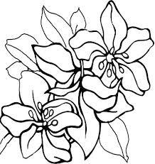 Free Color Pages Of Flowers Coloring Pages Of Flowers Royalty Free