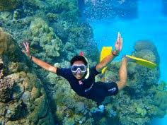 photo essay in loving memory of my sony p s first for everything finding nemo at the great barrier reef