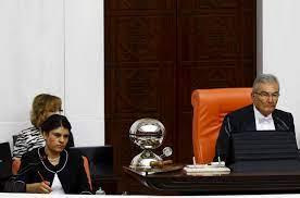 File:Deniz Baykal and Dilek Öcalan.jpg - Wikimedia Commons