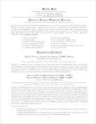 Simple Resume Format Doc Fascinating Cv Resume Example Resume Example Doc Marketing Manager Examples