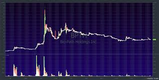 Bpth Stock Chart How April Fools Lose Money Timothy Sykes