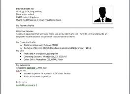 Example Of Simple Resume Magnificent Sample Simple Resume Resume Badak