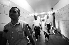puppies behind bars photo essays time puppies behind bars inmates sign up to train service dogs and get a little something in