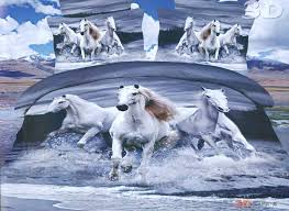 paint horses running in water photo 19
