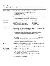 Criminal Justice Resume Resume
