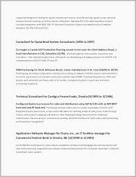 It Resume Examples Cool Technical Lead Resume Examples It Resume Examples 60 Technical