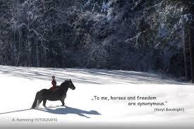 Anne Ramming Pferde Und Sprüche