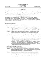Director Of Human Resources Resume Sample Cover Let Peppapp