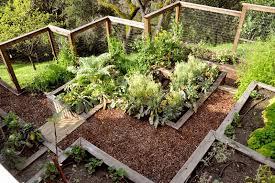 a steep backyard into a terraced garden