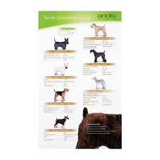 Andis Grooming Chart Andis Andis Terrier Clipping Guide