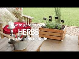 how to garden with herbs on a balcony or patio