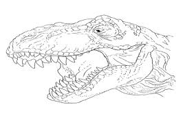 T Rex Head Drawing At Getdrawingscom Free For Personal Use T Rex