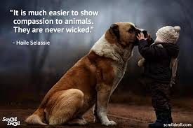 Animal Quotes And Sayings