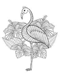 Water Bird Coloring Pages With 20 Gorgeous Free Printable Adult