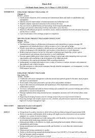 Cloud Project Managerume Samples Velvet Jobs Templates Unique Sample