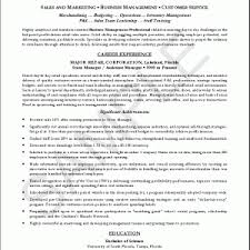 a professional resume view what they wrote a job resume sample    best resume  a professional resume professional resume examples format of a professional resume for freshers