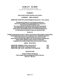 Resume Standard Format Extraordinary 28 Basic Resume Templates