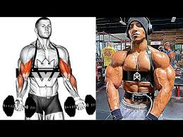 best exercises for upper body workout