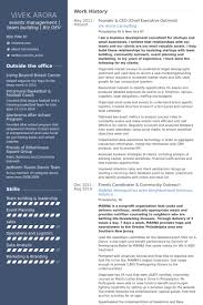 Free Ceo Resume Templates Ceo Chief Executive Officer Resume