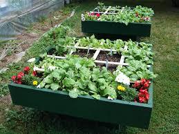 square foot gardening raised boxes
